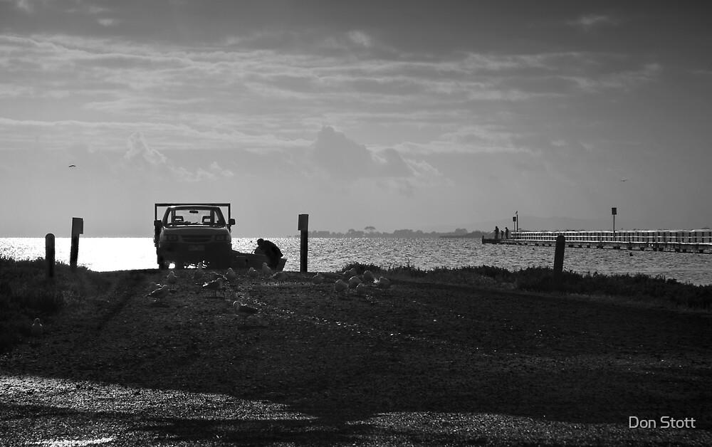 Queenscliff wetlands dawn by Don Stott