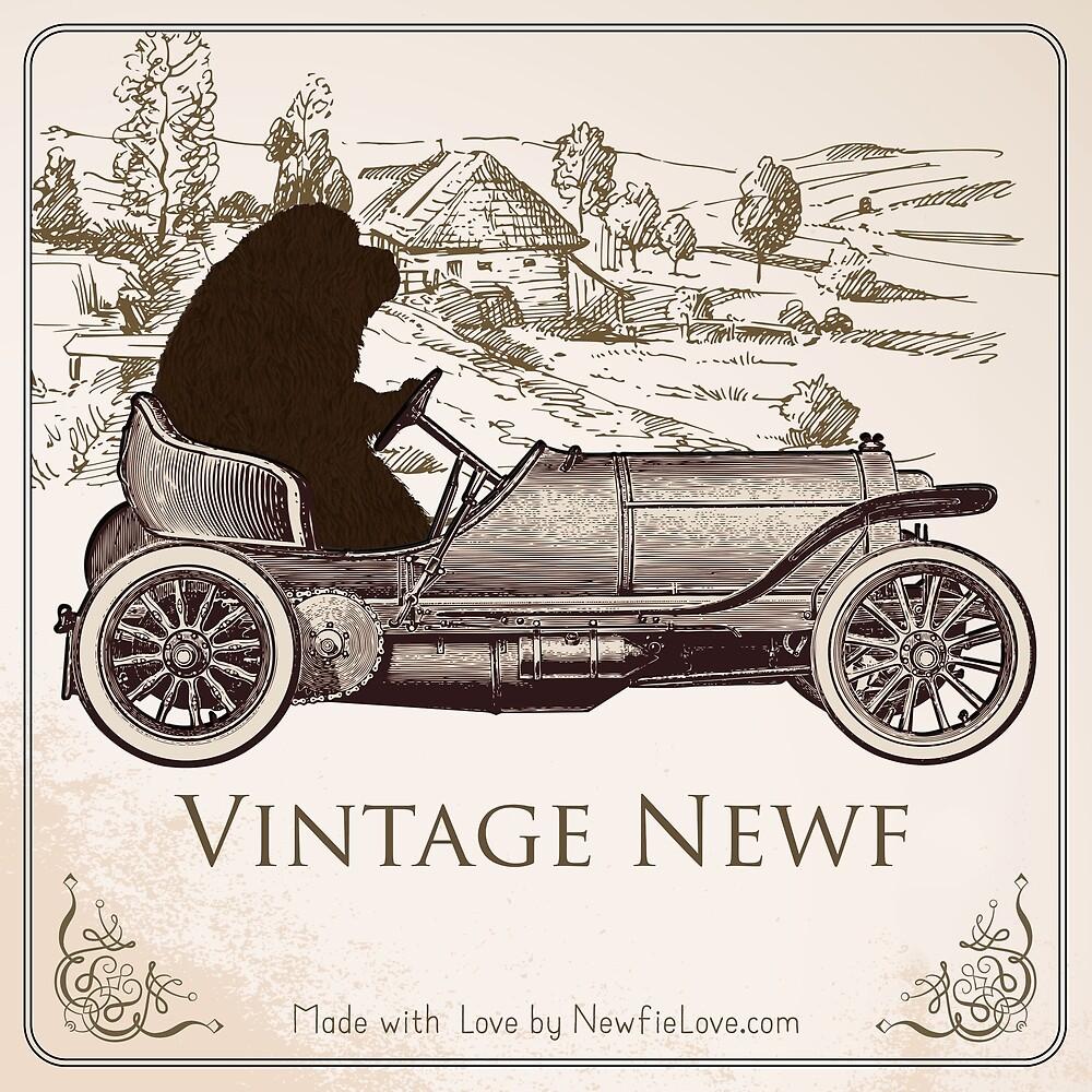 Vintage Newf by Christine Mullis
