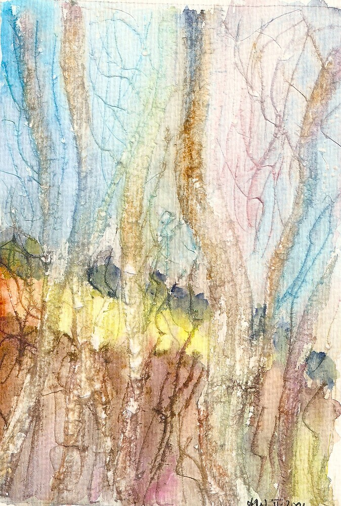 Carwinion Beeches II by Manda Ward
