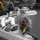 Kayak Baby by Joeltee