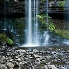 Russel Falls by Igor Janicijevic