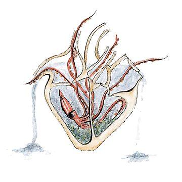 Heart Aquarium by HRothstein