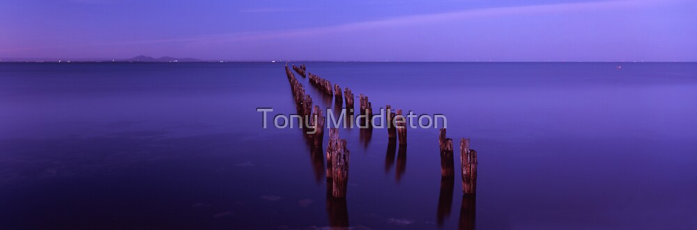 jetty reclaimation by Tony Middleton