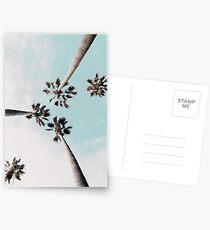 Palmen Palmen drucken Postkarten