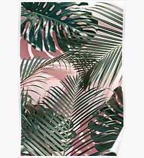 Grüne tropische Blätter auf einer rosa Wand   Palmenblätter Poster