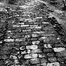"The brick path by "" RiSH """
