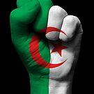 Flagge von Algerien auf einer angehobenen geballten Faust von jeff bartels
