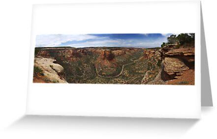 Ute Canyon, Colorado National Monument by Brian Hendricks