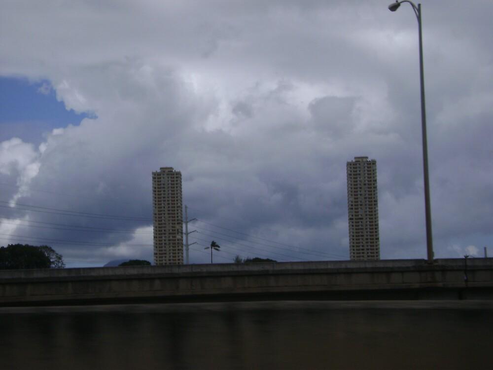 The hawaiian twin towers by Amateur19