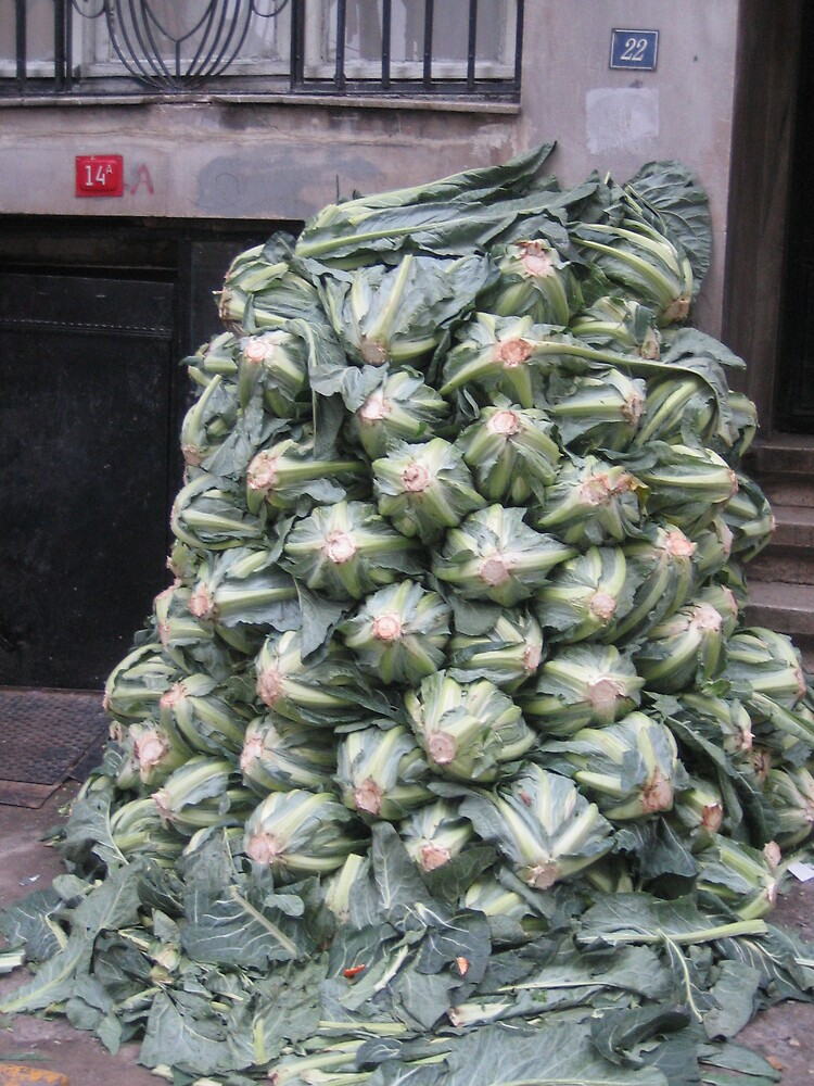 Cauliflower on the doorstep by istanbulgirl
