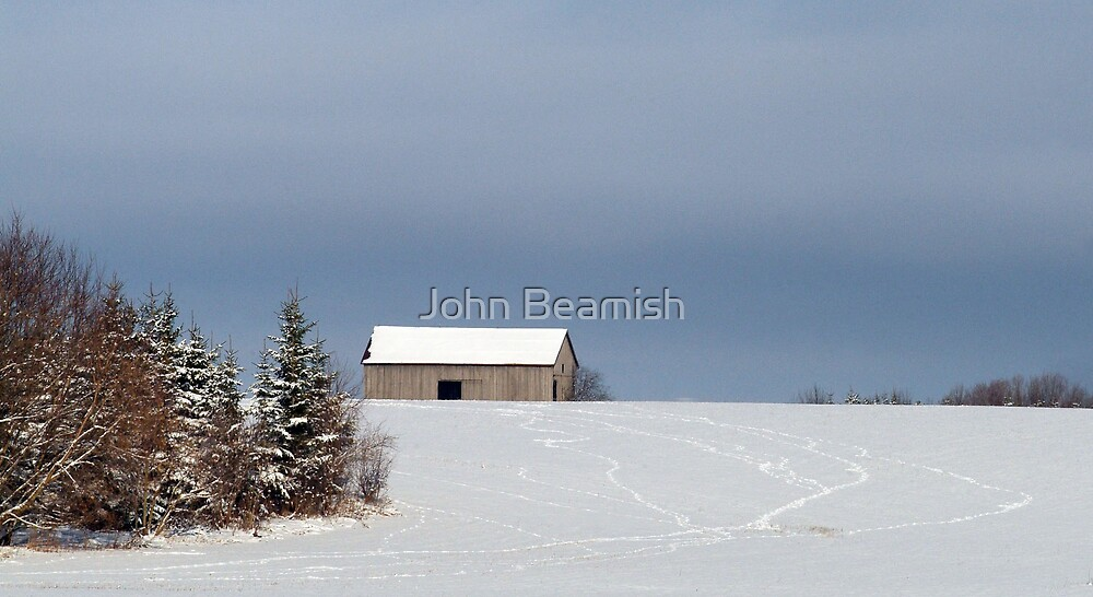 All Paths Lead Home by John Beamish