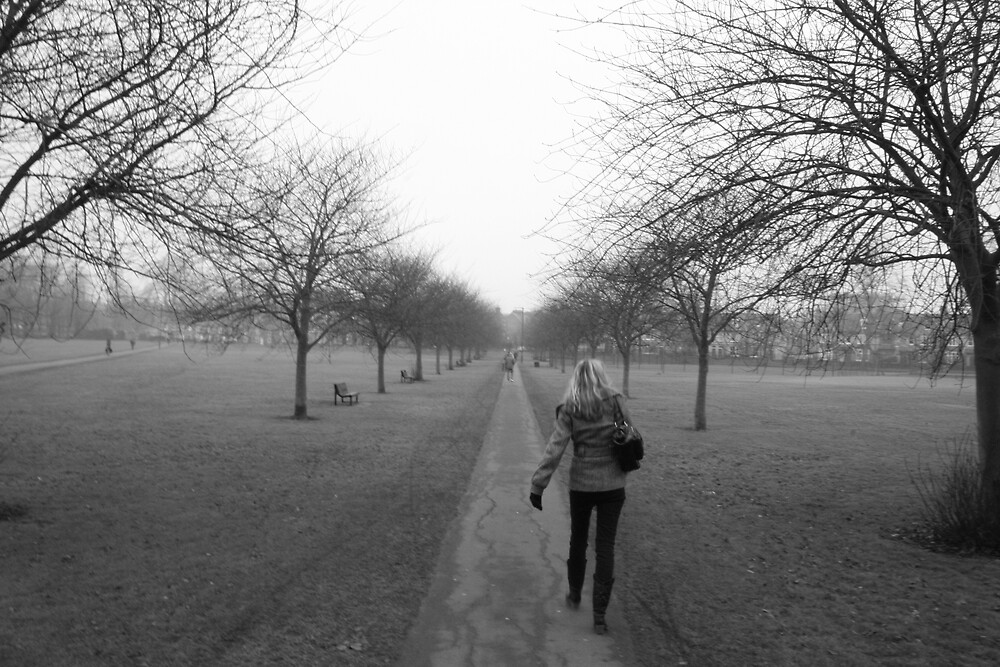 the walk by Sebastian Golden