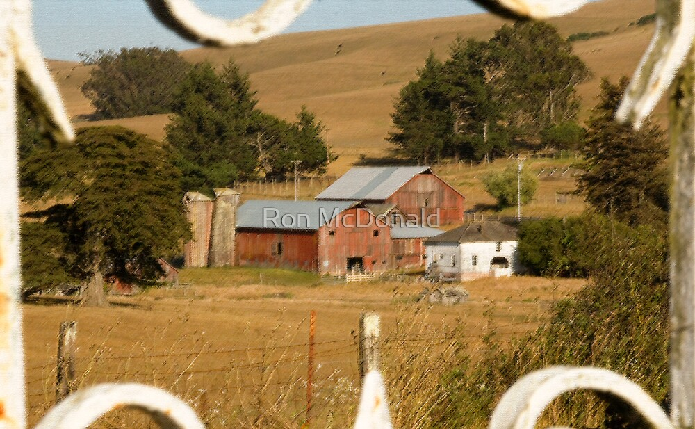 Old Tomales farm by Ron McDonald