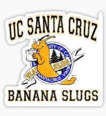 UC SANTA CRUZ BANANA SLUGS from Pulp Fiction Sticker