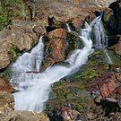 St Columba Falls - Tasmania - Australia by TonyCrehan