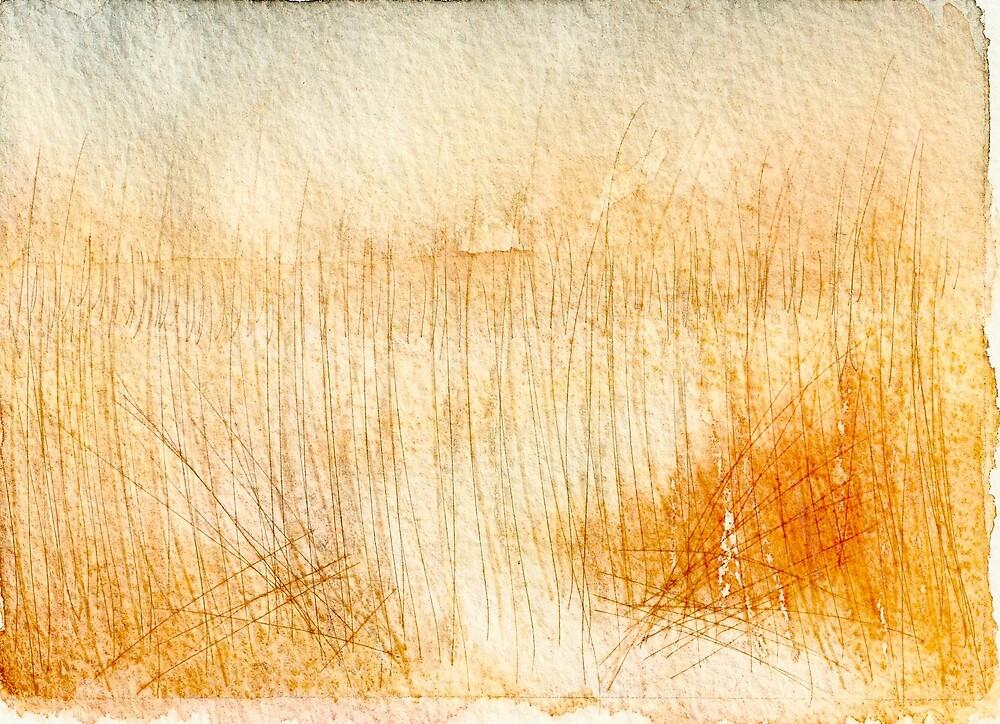 Winter Reeds at Swanpool by Manda Ward