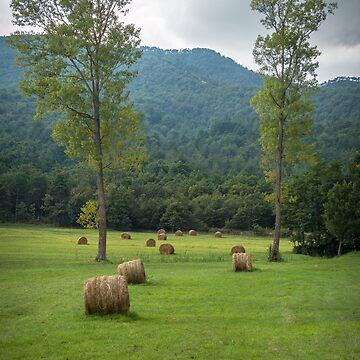 Beigua park - countryside by acasali