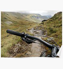 Downhill Mountain Biking Poster
