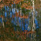 Appalachian Sky by Richard G Witham