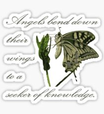 Angels Bend Down Their Wings To A Seeker Of Knowledge Sticker