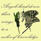 Angels Bend Down Their Wings To A Seeker Of Knowledge by taiche