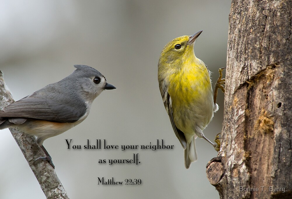 You shall love your neighbor as yourself by Bonnie T.  Barry
