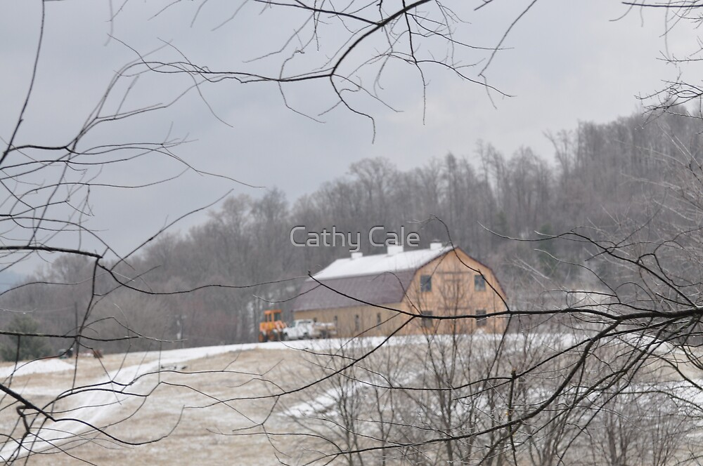 Barn on the Prarie by Cathy Cale