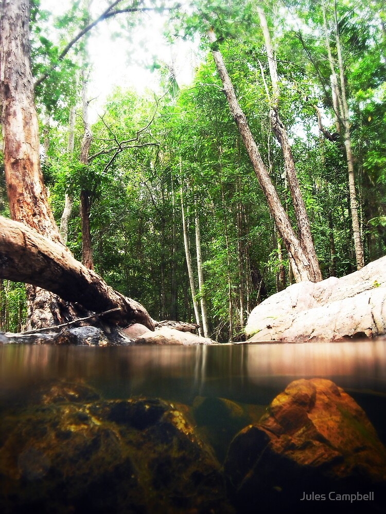 Florence Falls Swim Spot by Jules Campbell