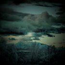 Utah by Andre Bulyk