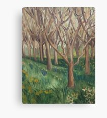 The Onset Of Spring In The Wild Garden Canvas Print