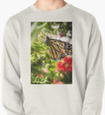 Closeup Monarch Butterfly Pullover