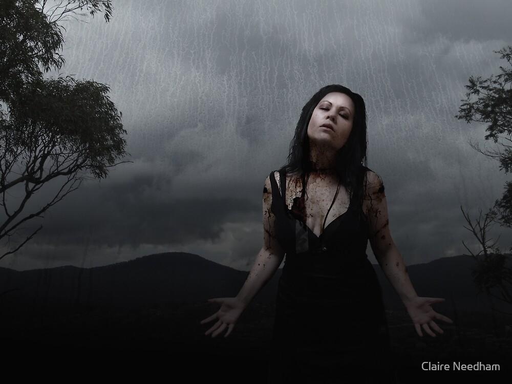 Schism by Claire Needham