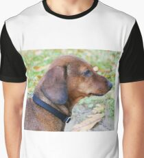 dachshund wild boar Graphic T-Shirt