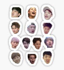 Siebzehn Derp-Gesichter Sticker