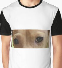 dachshund cream eyes Graphic T-Shirt