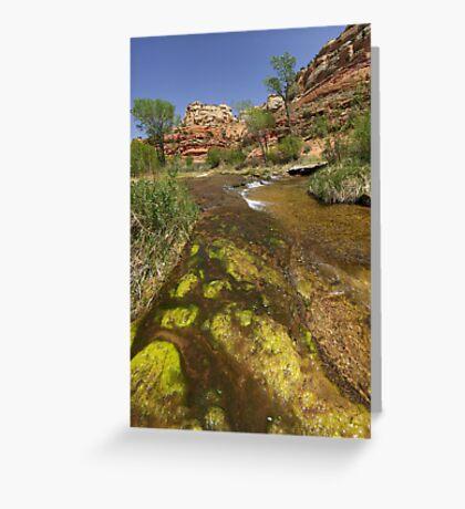 Calf Creek, Calf Creek Campground, Utah Greeting Card