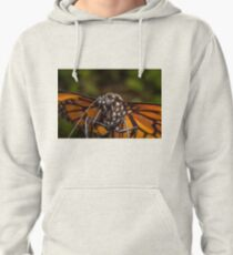 Closeup Monarch Butterfly Pullover Hoodie