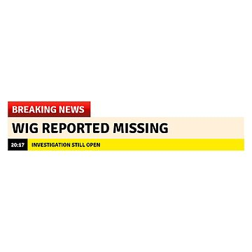 Wigs Report Missing 2 by desexperiencia