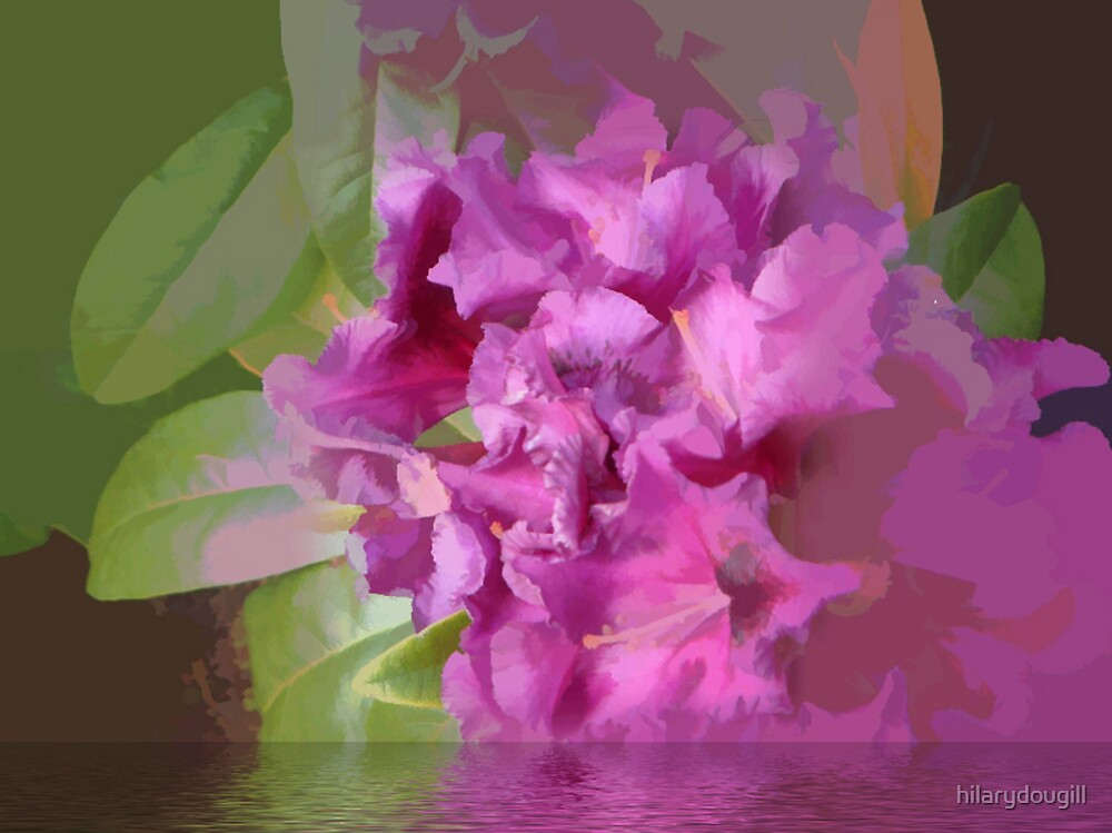 Abstract of deep pink rhodie by hilarydougill