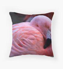 Flamingo at Martin Mere Throw Pillow