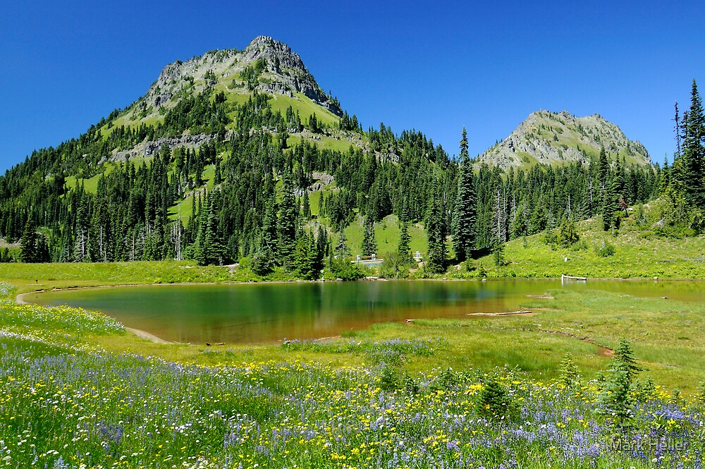 Summer at Chinook Pass - Mt. Rainier N. P. by Mark Heller