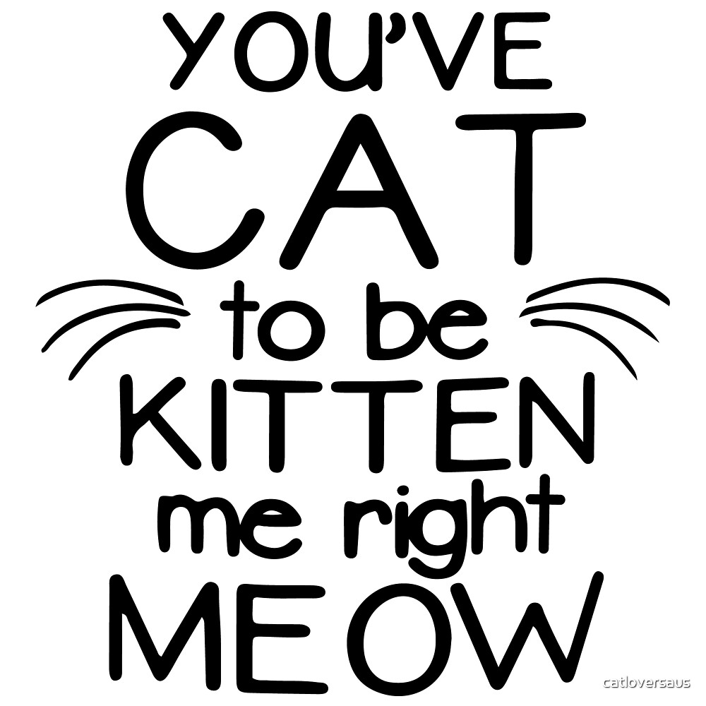 You've Cat To Be Kitten Me Right Meow by catloversaus