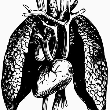 lungs by theG