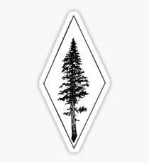 Ponderosa Tree Sticker