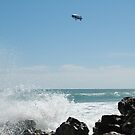 Ocean Blimp by Donna Adamski