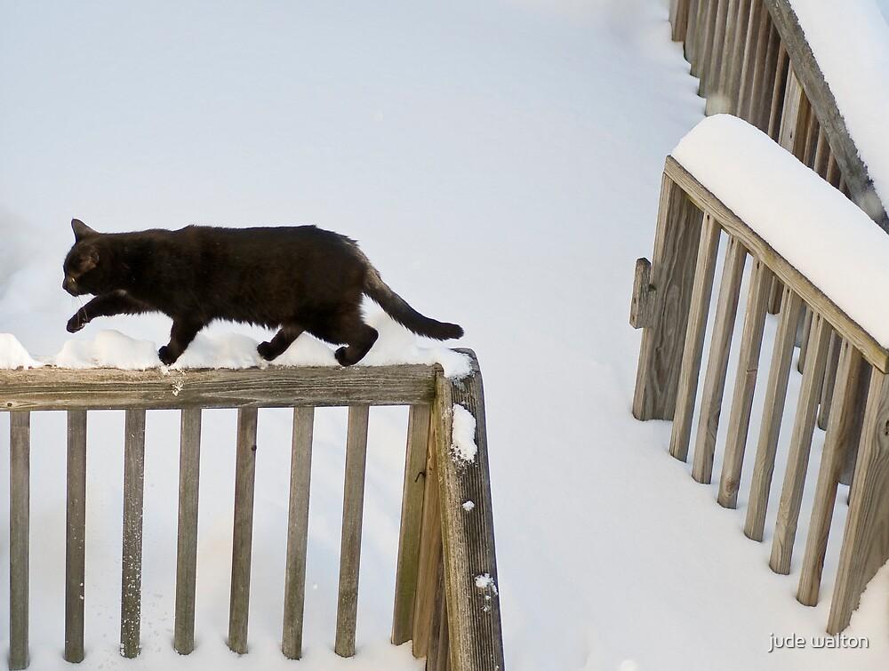 not enjoying winter by jude walton