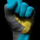 Flagge der Bahamas auf einer angehobenen geballten Faust von jeff bartels