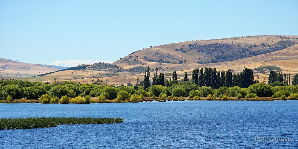 Lake Meadowbank in Summer - Derwent Valley, Tasmania by Ruth Durose