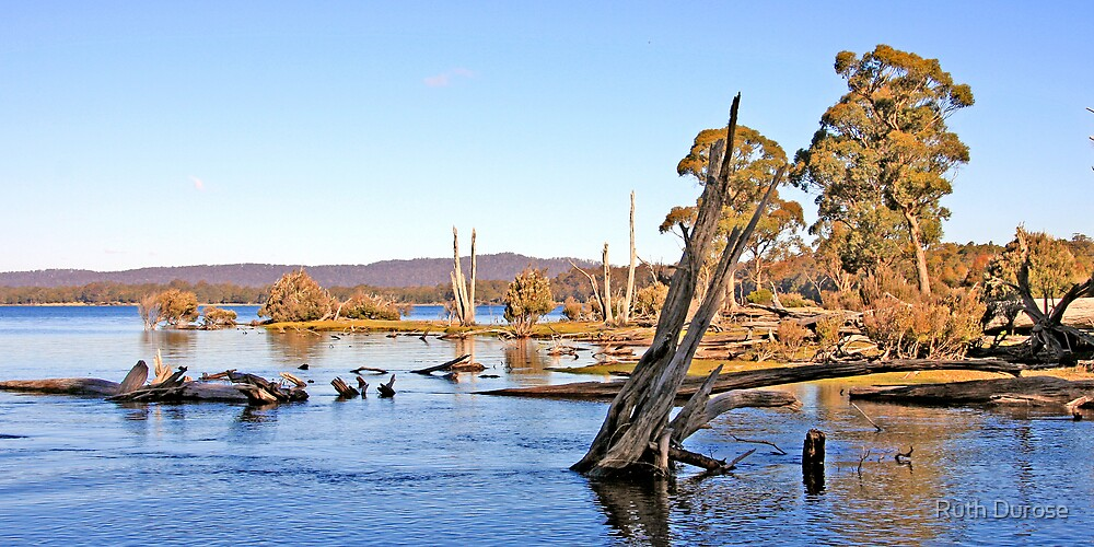 Lake St Clair - Tasmania by Ruth Durose