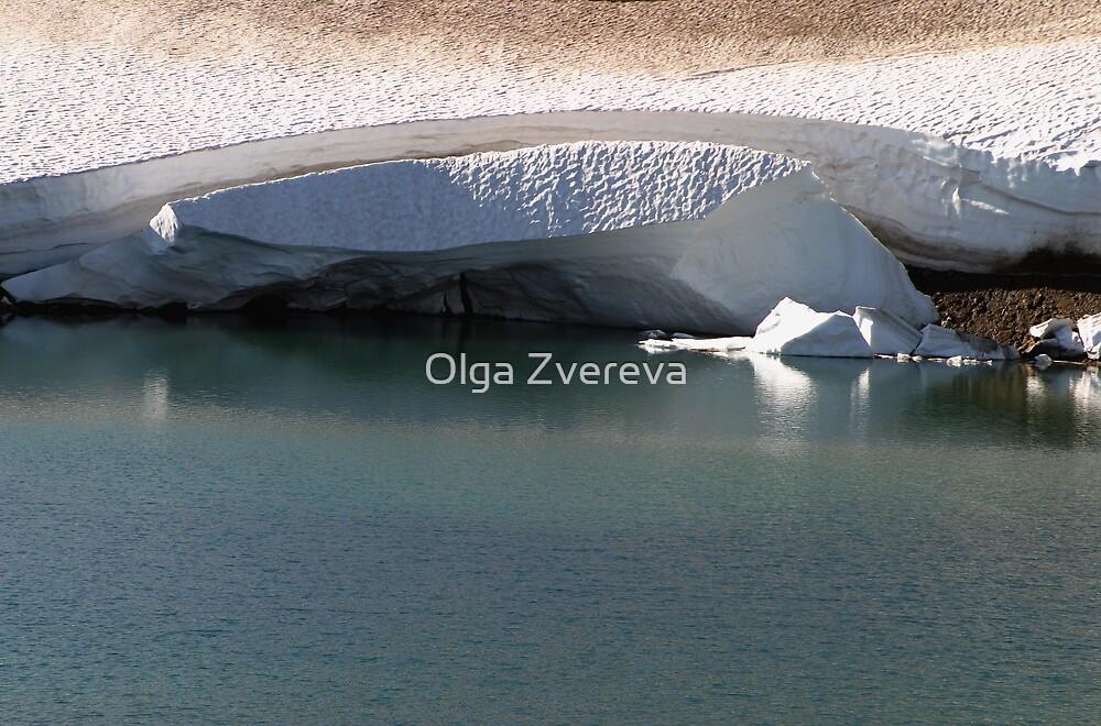 Frosen Lake by Olga Zvereva